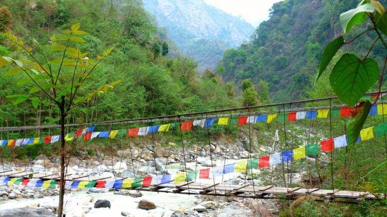Trekk dans l'Anapurna