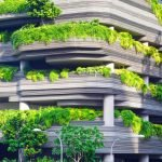 architecture maison nature