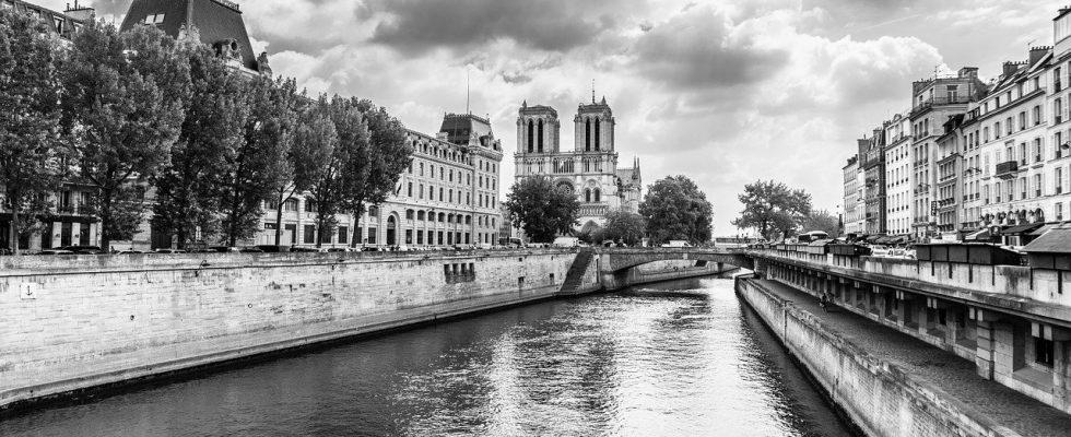 paris-notre dame rénovation