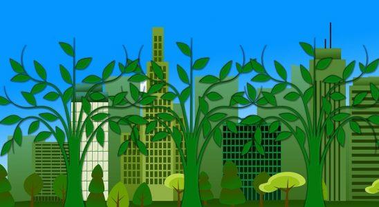 architecture-ecologique