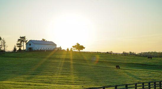 hangar-agricole